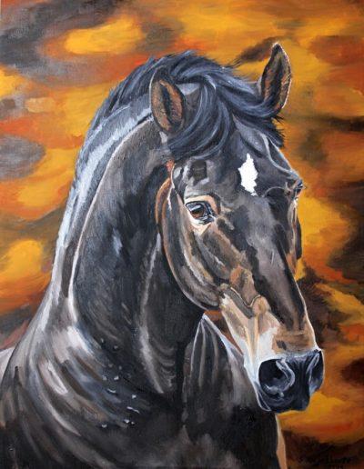 Bilder Stefanie Angelkorte Andalusier Pferdeportraits Öl auf Leinwand Pferdemaler