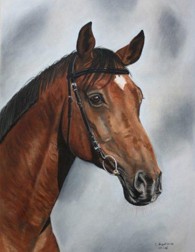 Bilder Stefanie Angelkorte Fandango Pferdeportraits Pferdemaler Pastellkreide Fidertanz