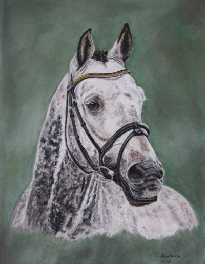 Bilder Stefanie Angelkorte Fantasy Pferdeportraits Hengst Sportpferd