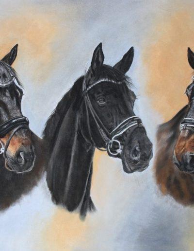 Bilder Stefanie Angelkorte Harrisson Campino Dubai Pferdeportraits Tripleportrait Collage