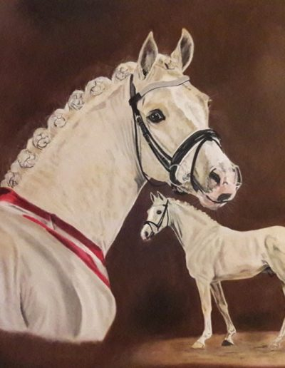 Bilder Stefanie Angelkorte Miami Pferdeportraits Ponyhengst Pferdemaler