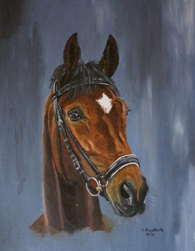 Bilder Stefanie Angelkorte Santana Pferdeportraits Ölbild Dressurpferd