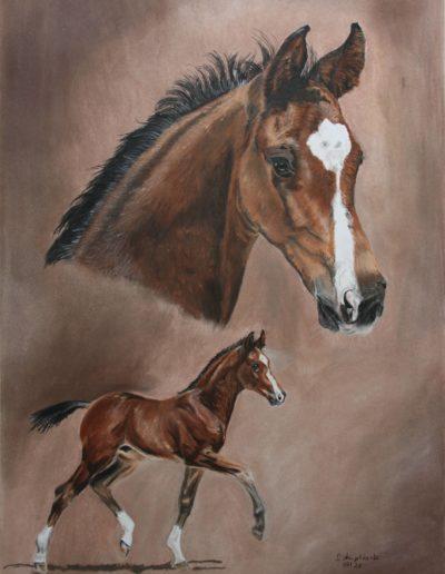 Bilder Stefanie Angelkorte Edward Escamillo Pferdeportraits Auftragsmalerei Fohlen Collage Pferdezucht