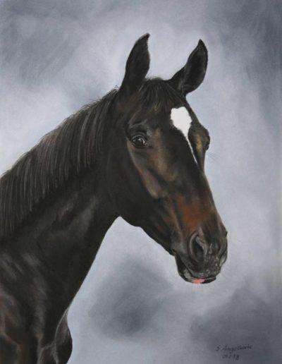 Bilder Stefanie Angelkorte Fidibus Pferdeportraits Auftragsmalerei Jährling Westfale