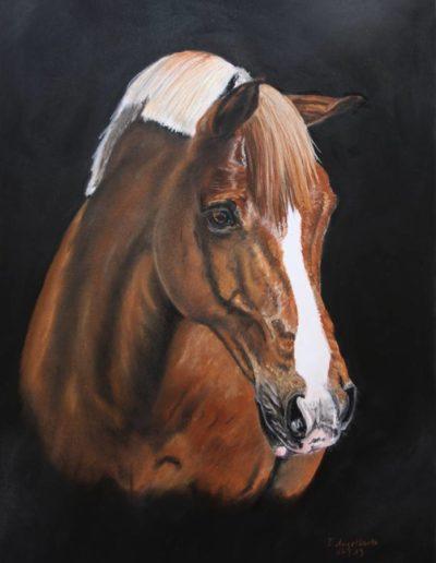 Bilder Stefanie Angelkorte Kaira Pferdeportraits Auftragsmalerei Westfale Stute Fuchs