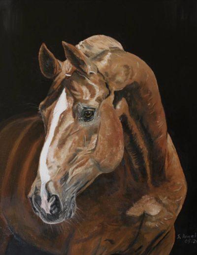 Bilder Stefanie Angelkorte Pferdeportraits Hengstportrait Dressurpferd Londonderry Ölbild