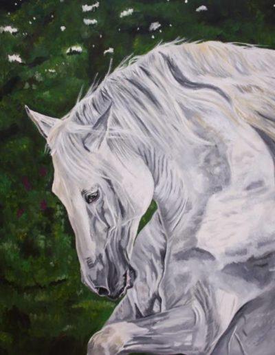Bilder Stefanie Angelkorte Pferdeportraits Hengstportrait Dressurpferd Lusitano Andalusier Ölbild